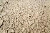 Soil cracks — Stock Photo