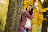 Young pregnant woman in the autumn park — Photo