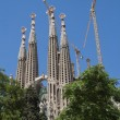 Sagrada Familia church in Barcelona — Stock Photo #64952671