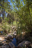 Paradise Valley in Morocco — Stock Photo