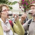 Senior couple tasting wine — Stock Photo #71823885