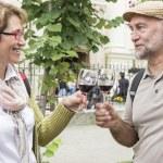 Senior couple tasting wine — Stock Photo #73489903