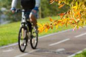 Bike path  — Stock Photo