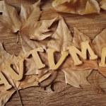 ������, ������: Autumn