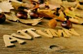 Autumn word with chestnuts and leaves — Stock Photo