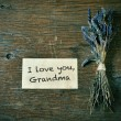 I love you, grandma — Stock Photo #56275853