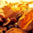 Roasted chestnuts and sweet potatoes — Stock Photo #57291027