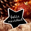 Feliz navidad, merry christmas in spanish — Stock Photo #58380585