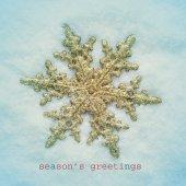 Snowy seasons greetings — Stock Photo
