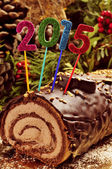 2015 yule log cake — Stock Photo