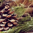 Logs and snowy pine tree branches and cones — Stock Photo #61731589