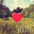 Word spring and heart-shaped balloon in a country landscape — Stock Photo #68423415