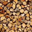 A pile of firewood logs — Stock Photo #69878925