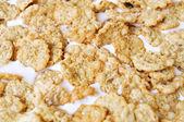 Yogurt and oatmeal cereals — Stock Photo