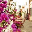 Charming street in Cadaques, Costa Brava, Spain — Stock Photo #74907485