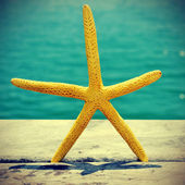 Starfish on an old wooden pier on the sea, with a retro effect — Stock Photo