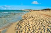 Panoramic view of the Es Cavallet beach, in Ibiza Island, Spain — Zdjęcie stockowe