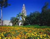 Balboa Park,San Diego — Stock Photo