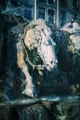 Horses of Bartholdi Fountain in Lyon  — Photo