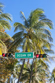 Famous Ocean Drive street sign — Stock Photo