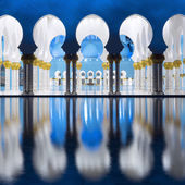 View of famous Grand Mosque — Stock Photo