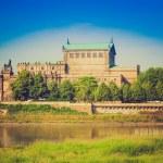 Dresden Semperoper — Stock Photo #53111953
