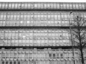 Black and white Robin Hood Gardens London — 图库照片