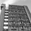 Black and white Trellick Tower in London — Stock Photo #58083007