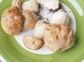Porcini Mushroom — Stock Photo