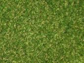 绿色的人工合成草草甸背景 — 图库照片