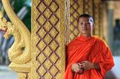 Portrait of a young Buddhist monk, Laos — Stockfoto