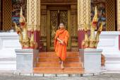 Young Buddhist Monk Walking In Front Of Monastery — 图库照片