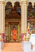 Young Buddhist Monk Walking In Front Of Monastery — Stock Photo