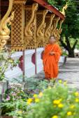 Young Buddhist Monk Walking Next To The Temple — Foto Stock