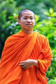 Portre genç Budist rahip — Stok fotoğraf