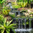 Waterfall in Phuket Butterfly Garden — Stock Photo #69127327
