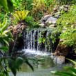 Waterfall in Phuket Butterfly Garden — Stock Photo #69129141