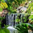 Waterfall in Phuket Butterfly Garden — Stock Photo #69131001