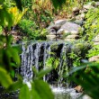 Waterfall in Phuket Butterfly Garden — Stock Photo #69131191