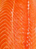 Struttura di bistecca di salmone — Foto Stock