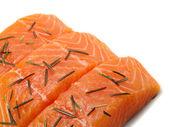 Salmon Steak (unprepared) close-up — Stock Photo