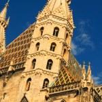 St Stephens Cathedral, Vienna, Austria — Stock Photo #62188483