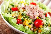 Sałatka z tuńczyka z warzywami — Zdjęcie stockowe