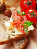 Toast with cheese and tomato — Stock Photo