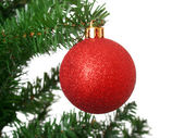 Red ball on Christmas tree — Stock Photo