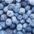 Blueberries pile background — Stock Photo #62255879
