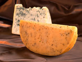 Blue cheese and Gouda — Stock Photo