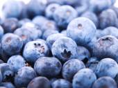 Blueberries pile background — Stock Photo