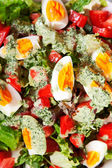 Summer salad with tomatoes — Photo