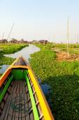 Floating gardens in Inle Lake — Stock Photo